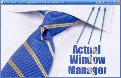 Actual Window Manager 6.5