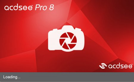 ACDsee Pro 8.0.262 (x86/x64)
